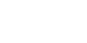 Art of Living Logo White